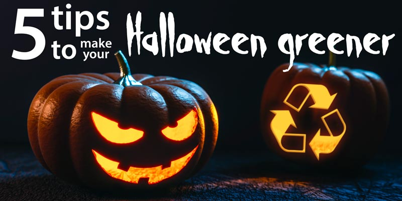 5 tips to make your Halloween greener