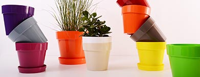 Repurposed plastic cups used to make plant pots