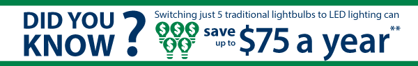 Did you know that switching just 5 traditional lightbulbs to LED lighting can save up to $75 a year?