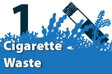 1. Cigarette Waste
