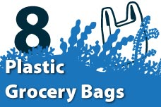 8. Plastic Grocery Bags